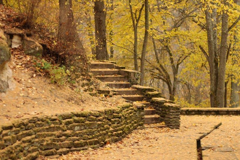 秋季公园在爱沙尼亚Toila 库存照片
