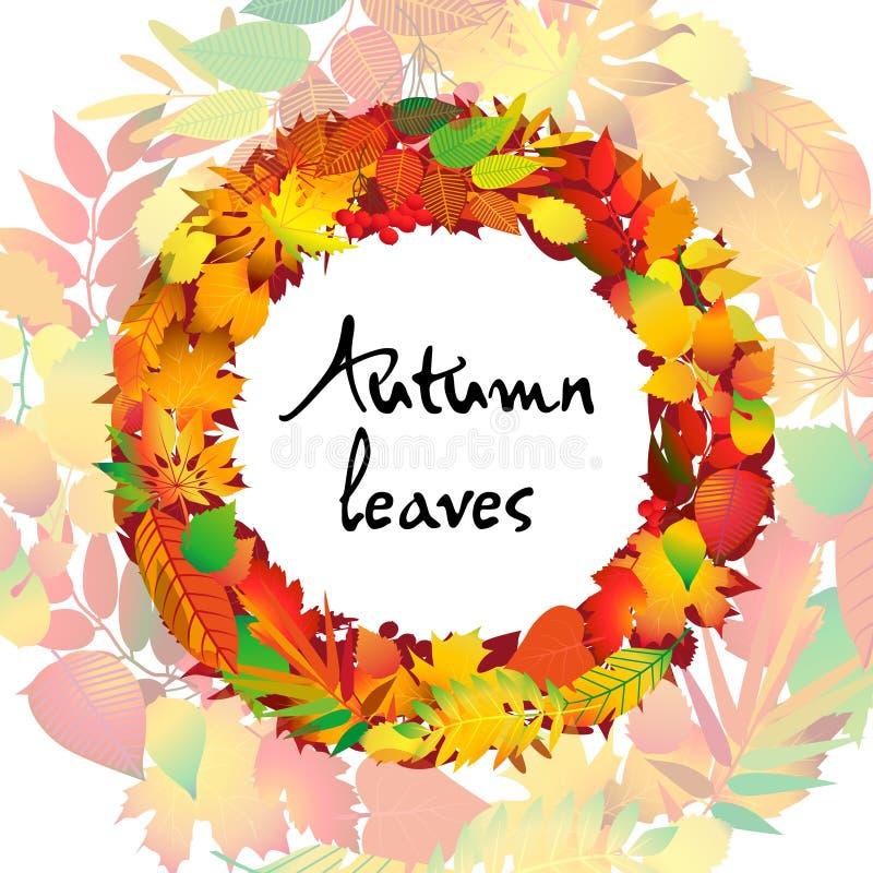 秋季来回框架 秋叶花圈  查出的设计要素 也corel凹道例证向量 向量例证