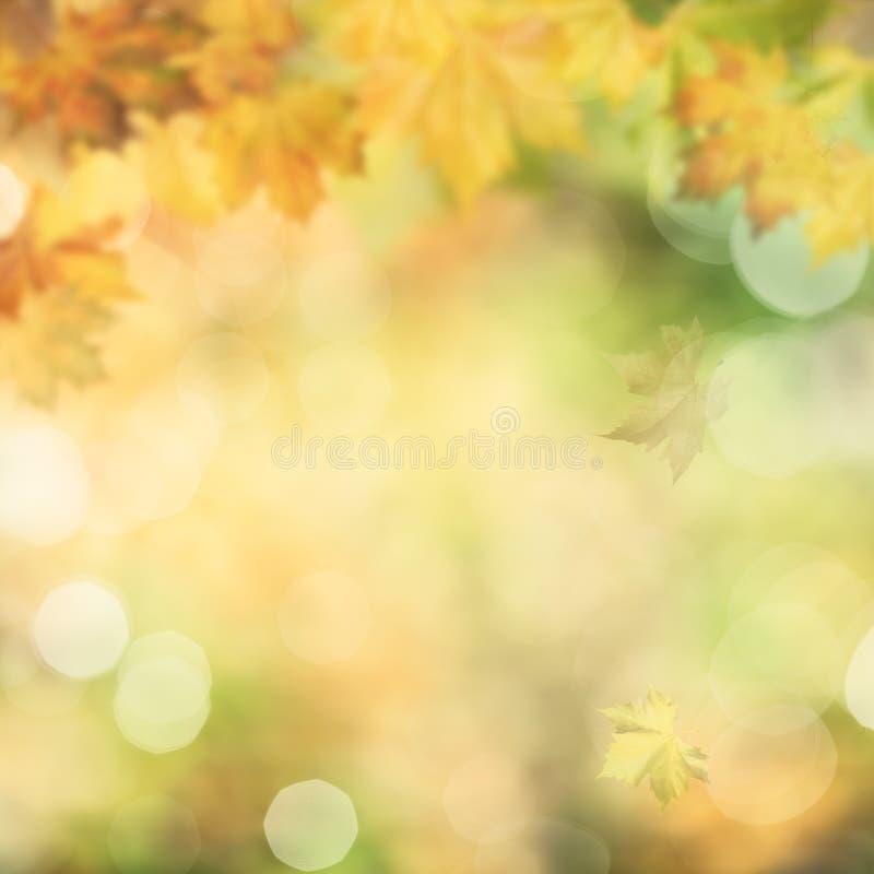 秋季秋天 图库摄影