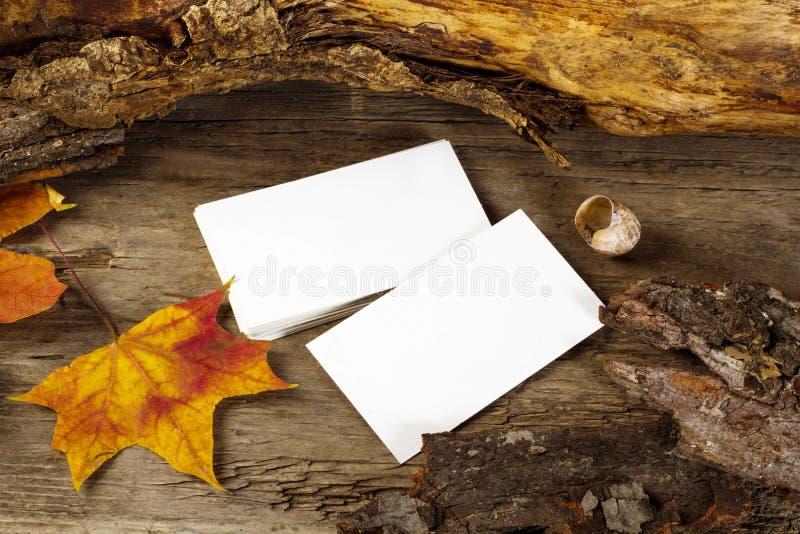 秋季背景中的空白名片照片 免版税库存照片