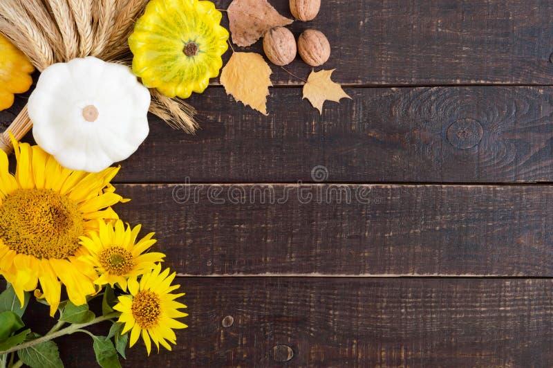 秋季食物背景 菜和果子庄稼在木背景 免版税库存照片