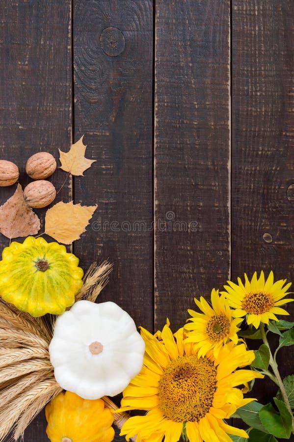 秋季食物背景 菜和果子庄稼在木背景 图库摄影