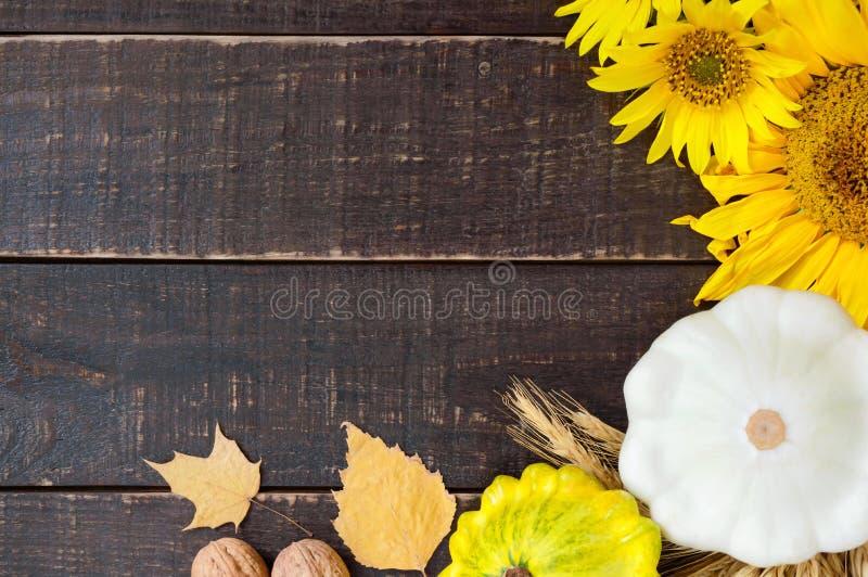 秋季食物背景 菜和果子庄稼在木背景 免版税图库摄影