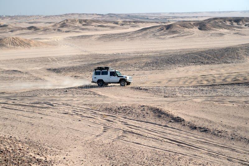 种族在沙子沙漠 汽车suv克服沙丘障碍 赛跑挑战沙漠的竞争 汽车驾驶越野 库存照片