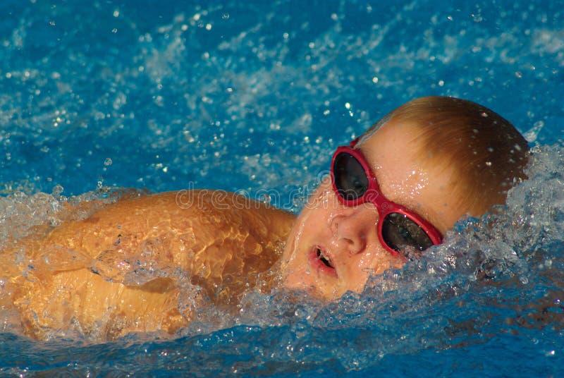 种族游泳 库存照片