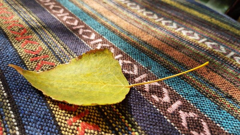 种族镶边的编织的地毯表面上的干燥黄色叶子特写镜头 库存照片