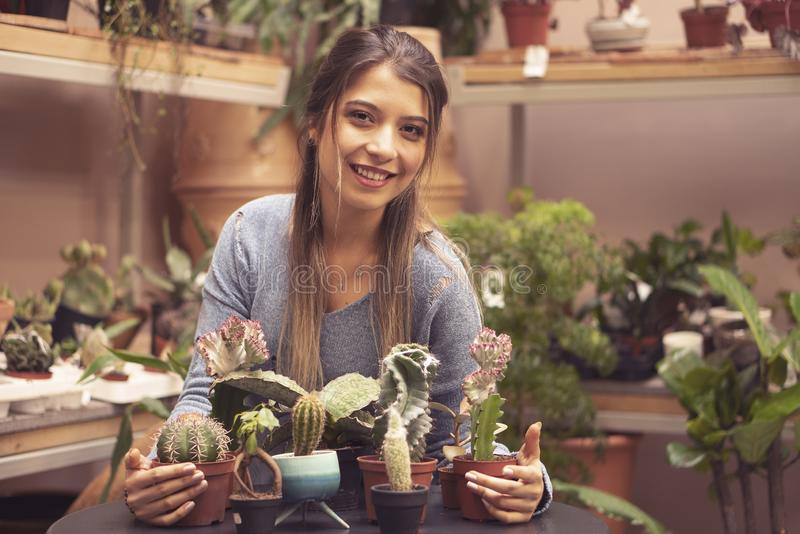 种植一个罐的妇女花匠仙人掌植物自温室 库存照片