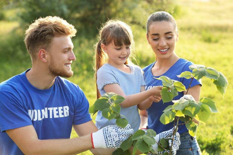 种植与志愿者的女孩树 库存图片