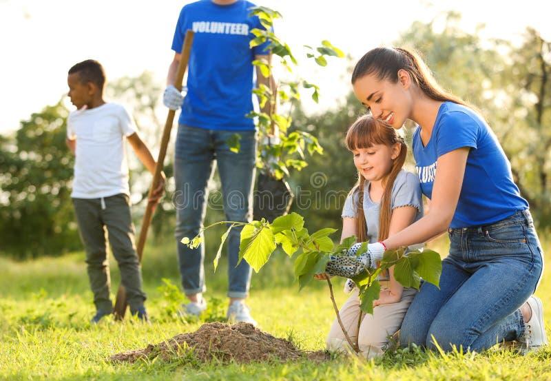 种植与志愿者的孩子树 免版税库存照片