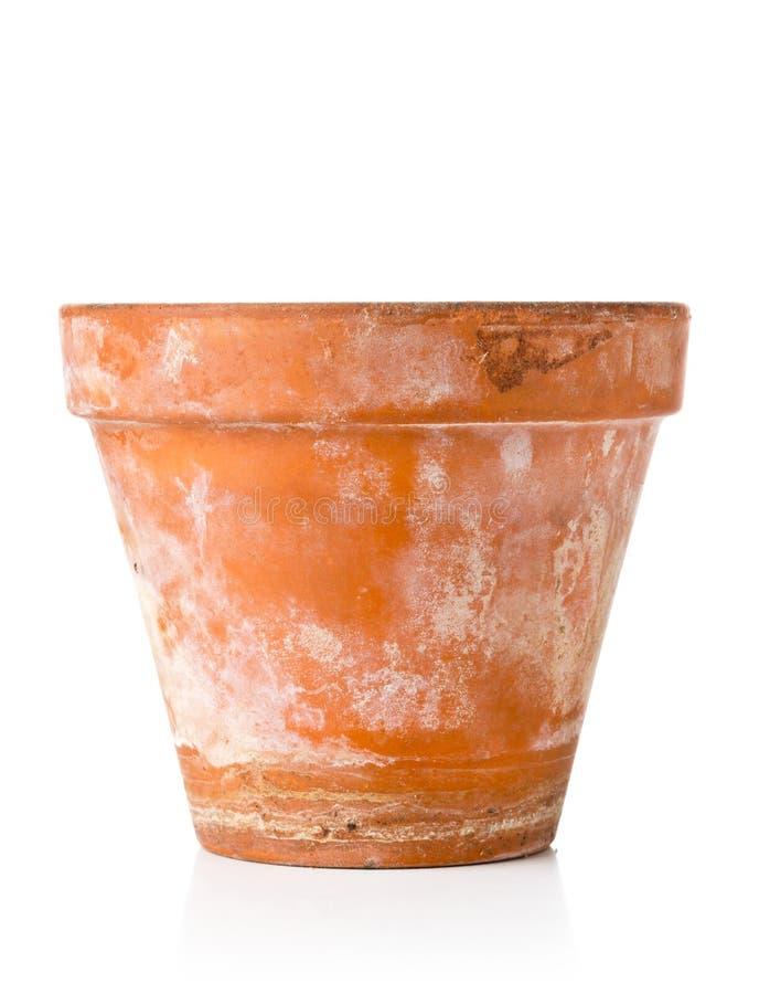 种植在白色的唯一空,半新赤土陶器罐 免版税库存图片