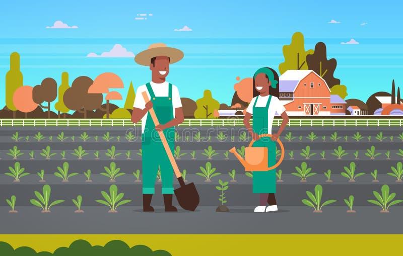 种植幼木植物菜非裔美国人的人妇女花匠的夫妇农夫使用铁锹喷壶eco 库存例证