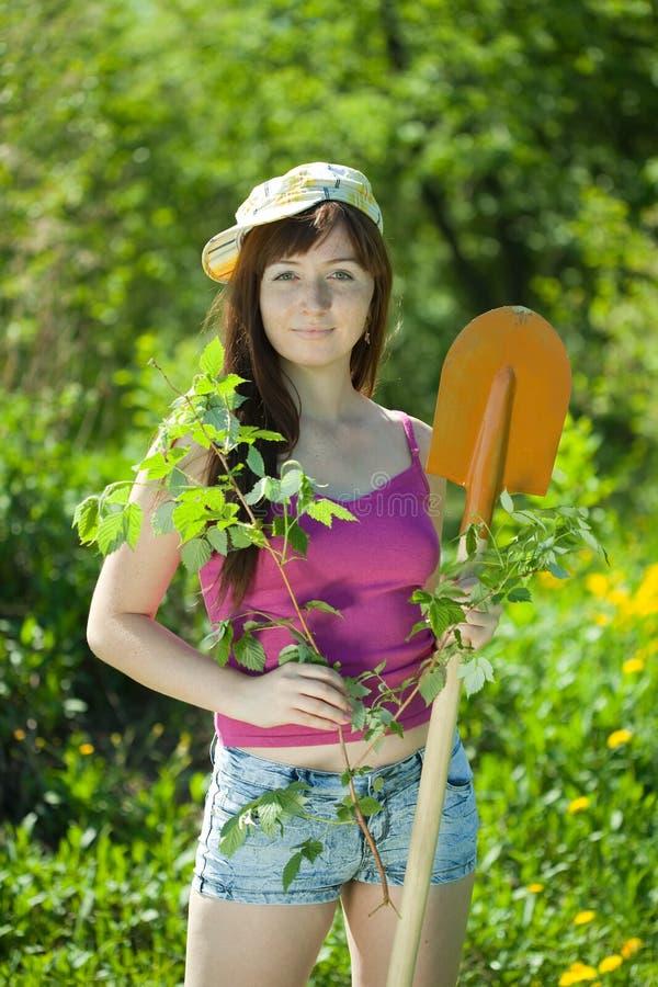 种植无核小葡萄干的妇女在庭院里 图库摄影