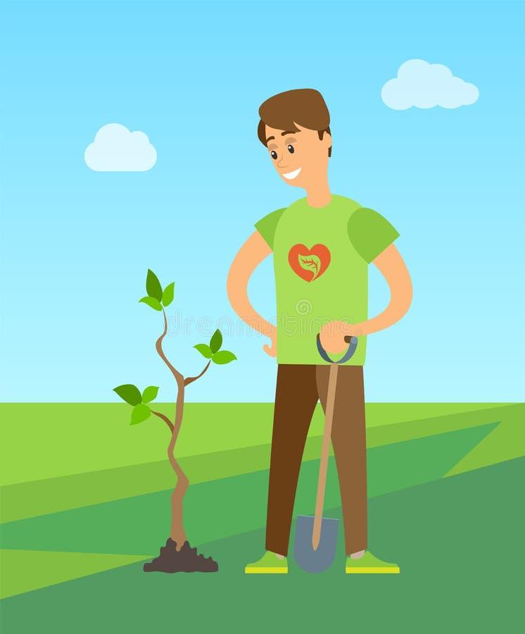种植树开掘的土壤的人种植新的桦树 皇族释放例证