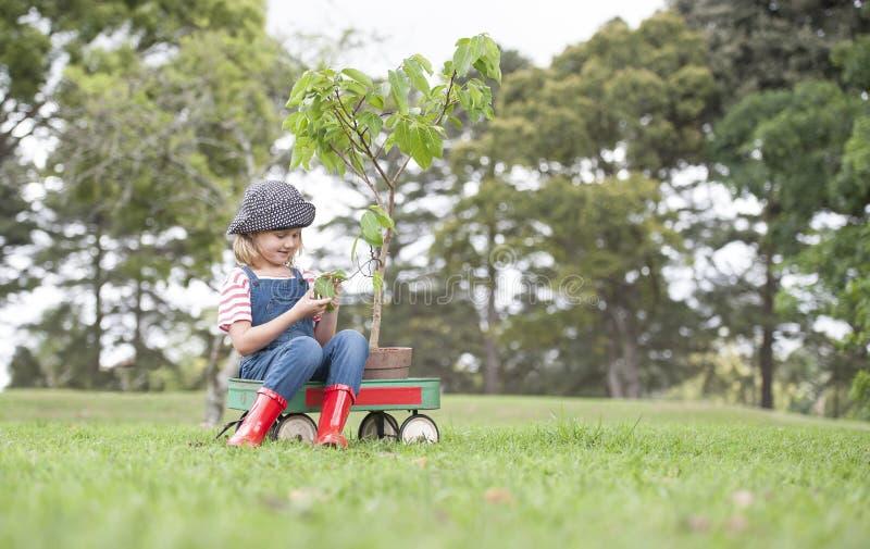 种植树的女孩在环境明白的公园 免版税图库摄影