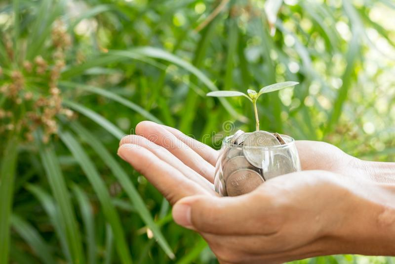 种植生长从在人` s手举行的玻璃瓶子的金钱硬币 免版税库存图片