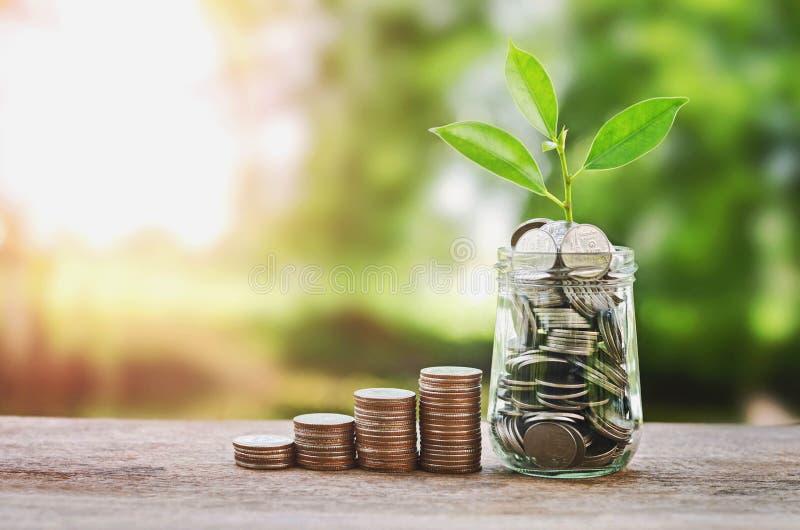 种植生长在硬币玻璃节约金钱瓶子和的概念 库存图片