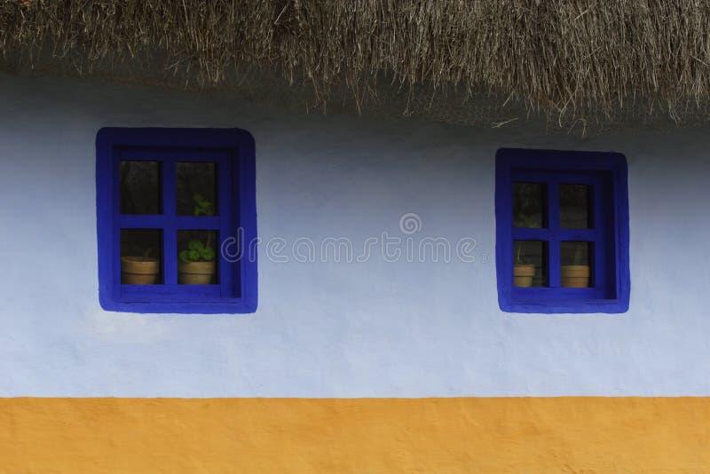种植盆的视窗 库存图片