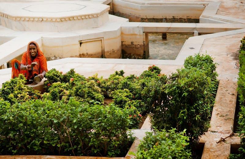 种植花的微笑的印地安妇女在琥珀色的宫殿 库存图片