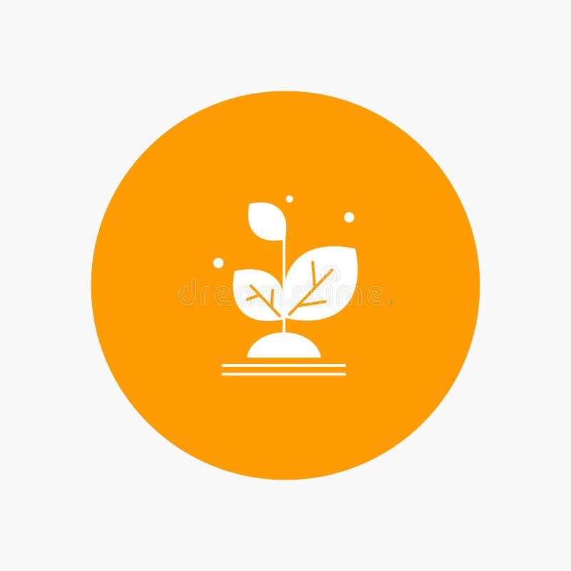 种植,增长,成长,成功 库存例证