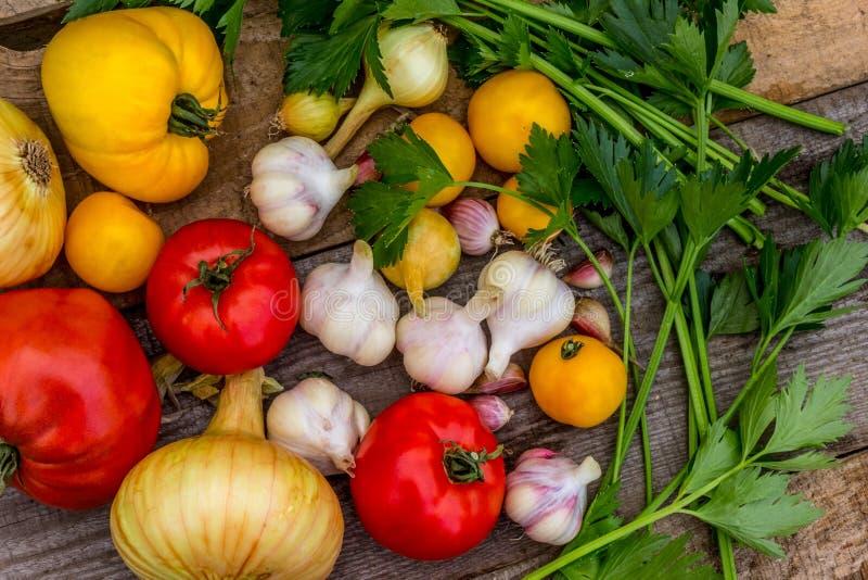 种田健康蕃茄的,芹菜,大蒜菜 免版税库存照片