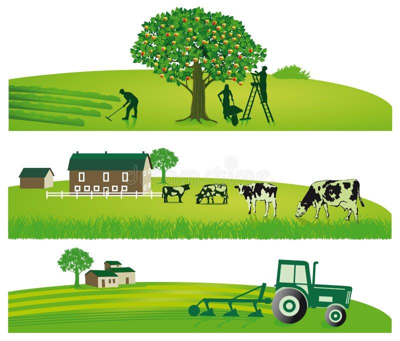 种田和农业风景 库存例证