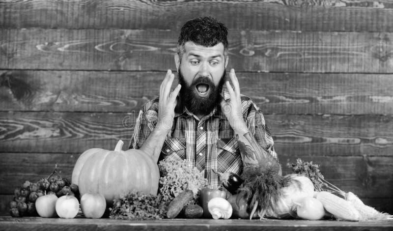 种田和收获概念 人有胡子的看看收获木背景 有本地出产的庄稼的农夫在桌上 免版税图库摄影