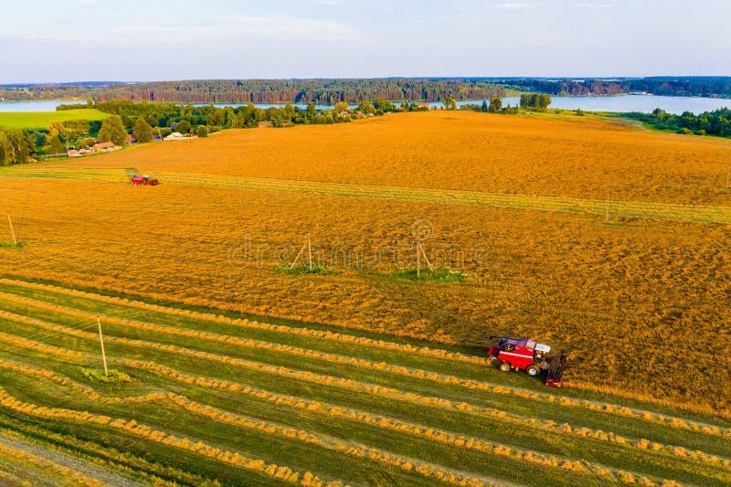 种田在乡下,收获概念 机器收集五谷,空中风景 免版税库存照片