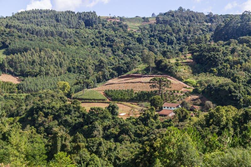 种田在谷和山在新星Petropolis 免版税库存图片