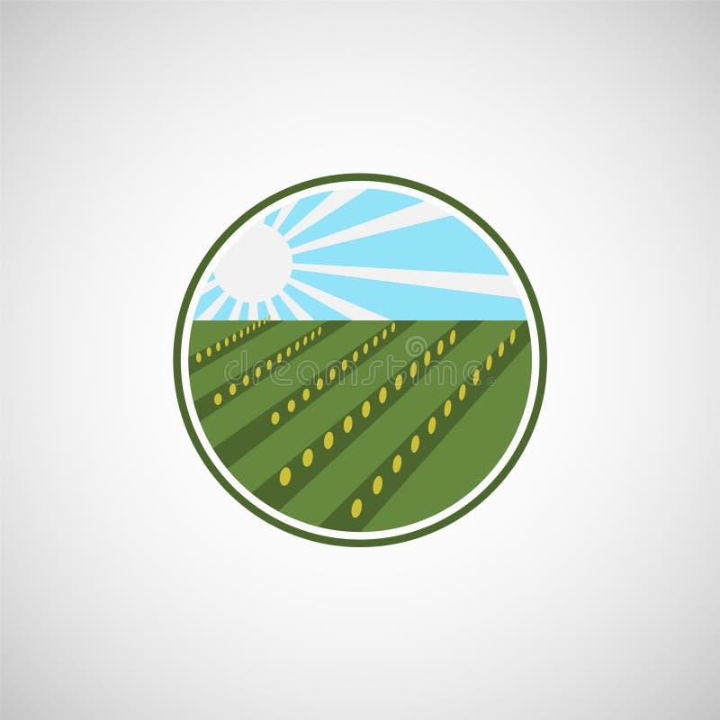 种田新鲜的产品独特的标志或象图象 有机耕田商标设计想法 向量例证