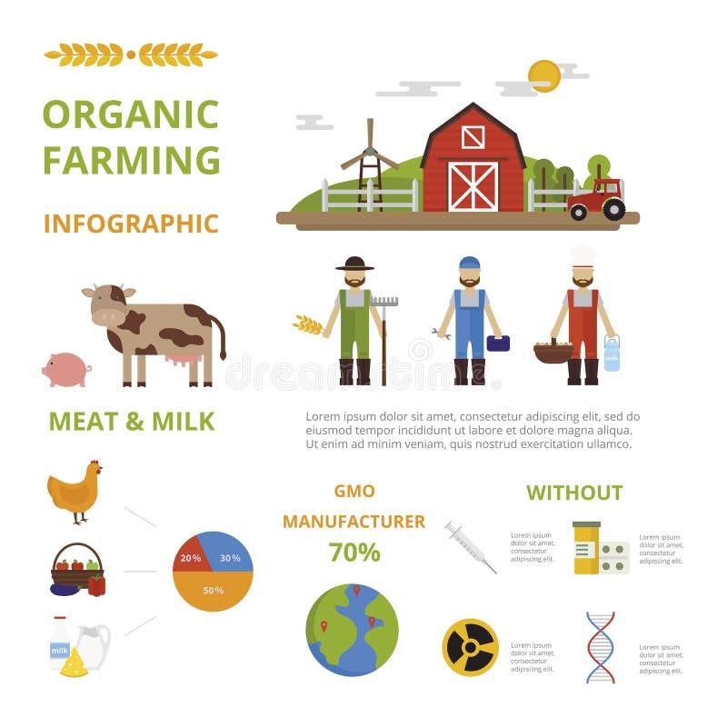 种田有机食品infographic元素概念传染媒介的农业 向量例证