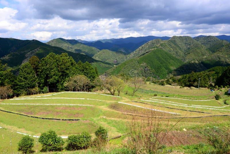 种田沿Kumano Kodo的村庄,在Tanabe附近在和歌山,日本 免版税库存照片