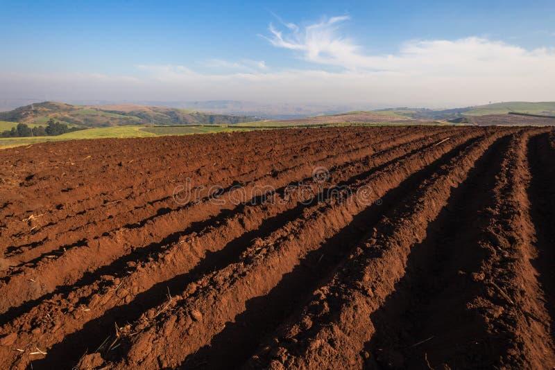 种田被犁的地球厂季节 免版税库存照片