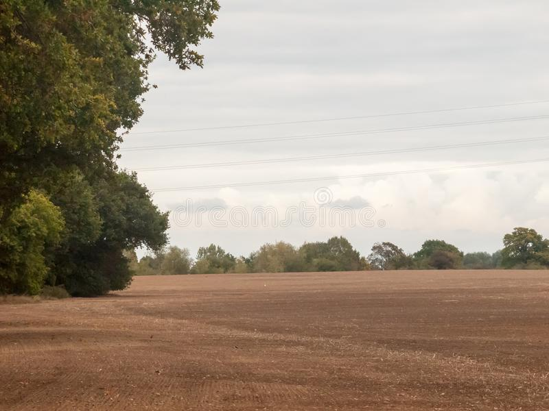 种田被耕的产业的英国棕色农田阴云密布天鸟 免版税图库摄影