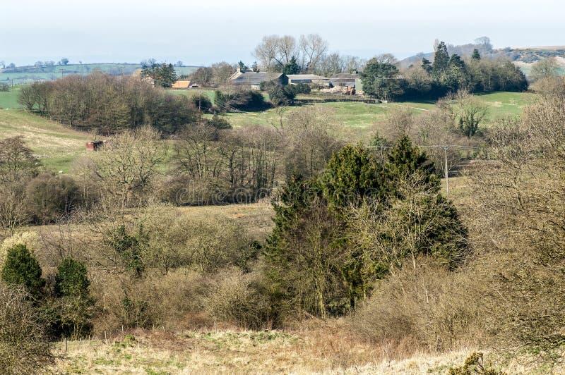 种田风景的英国山地 库存照片