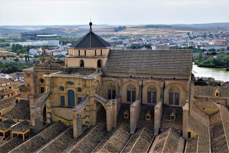 科多巴它惊人的梅斯基塔大教堂 免版税图库摄影