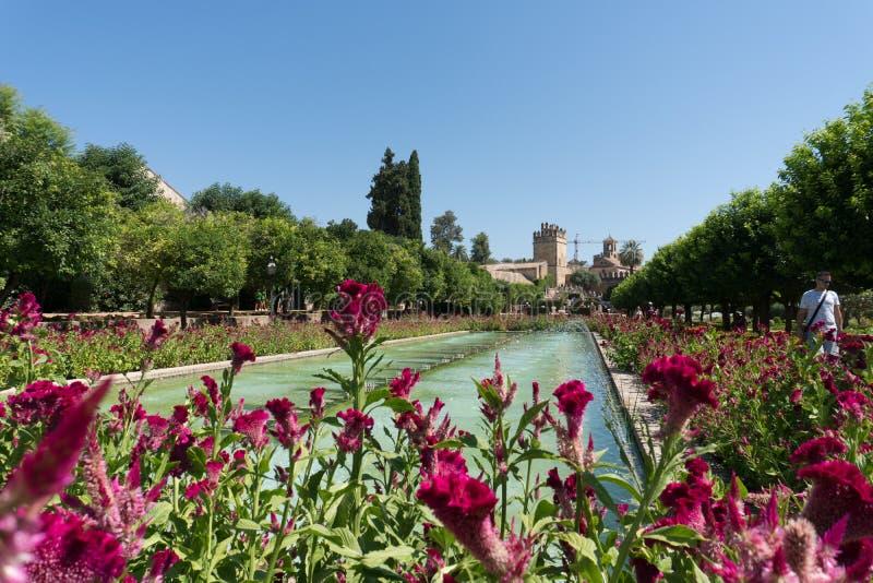 科多巴安达卢西亚,西班牙真正的城堡的庭院  免版税库存照片