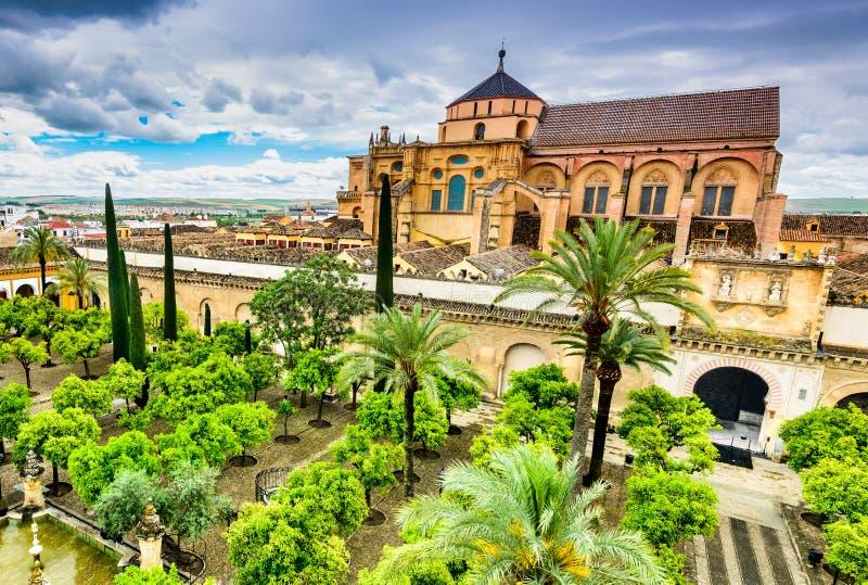 科多巴-大教堂梅斯基塔,安大路西亚,西班牙 免版税库存照片