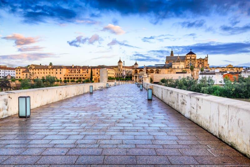 科多巴-大教堂梅斯基塔,安大路西亚,西班牙 免版税图库摄影