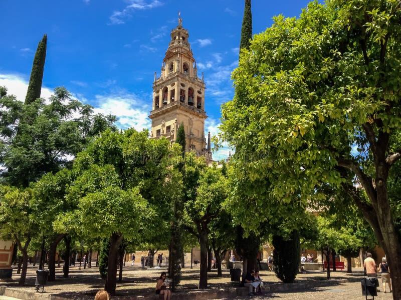 科多巴,西班牙大教堂清真寺 免版税库存图片