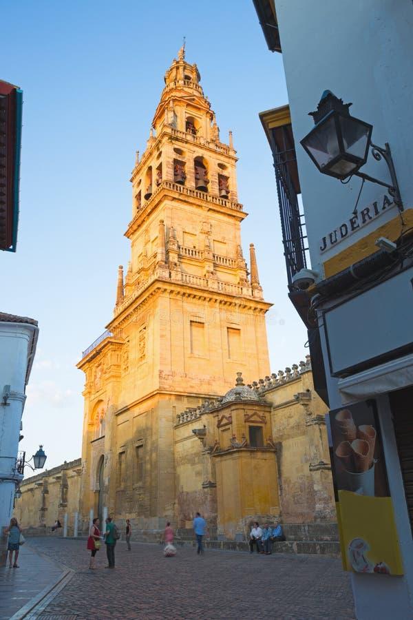 科多巴,西班牙- 2015年5月26日:在晚上光和墙壁的大教堂塔 免版税库存照片