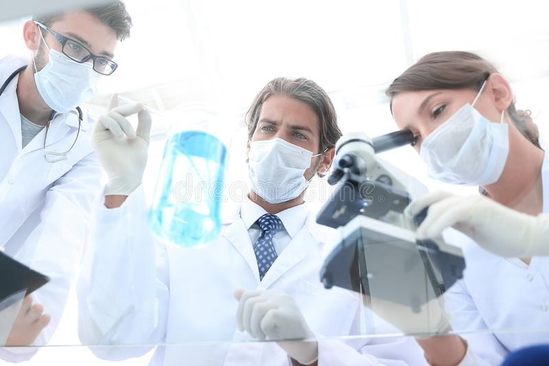 科学家在实验室环境里的开展研究 免版税库存图片