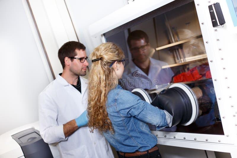 科学家在实验室环境里研究 库存图片