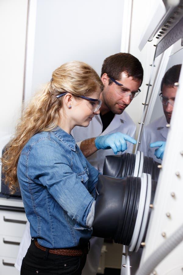 科学家在实验室环境里研究 免版税库存图片