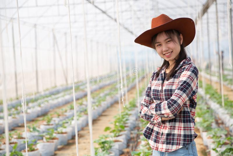 科学家妇女和农夫检查瓜水果质量 免版税库存图片