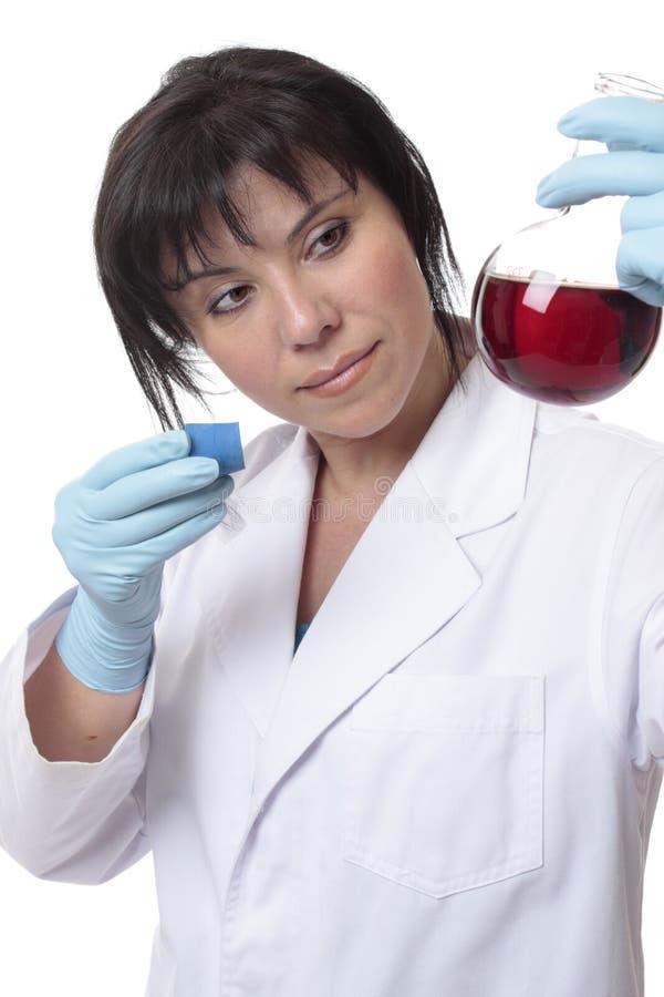科学家检查的烧瓶 免版税库存图片
