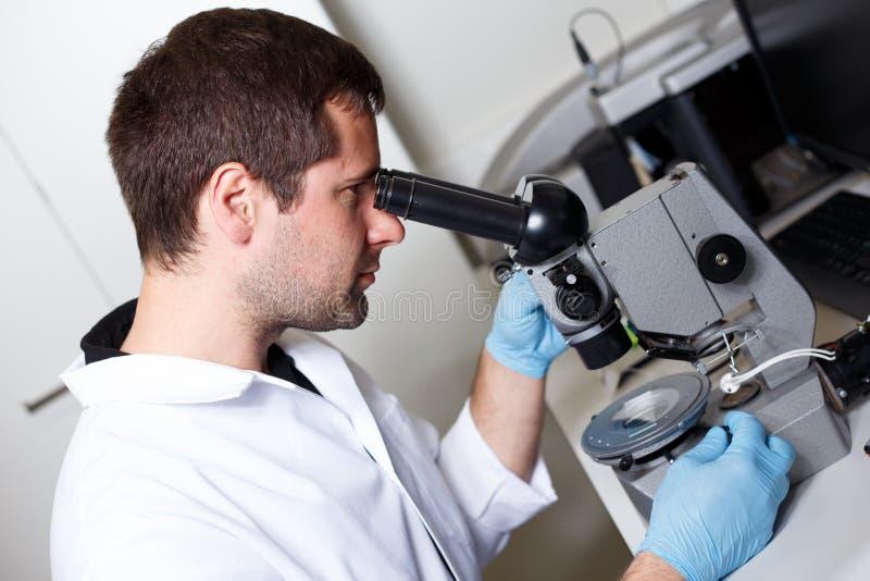 科学家研究在实验室环境里 免版税库存图片