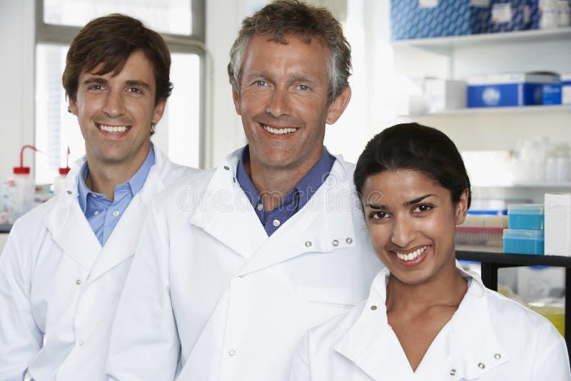科学家确信的队在实验室 免版税库存照片