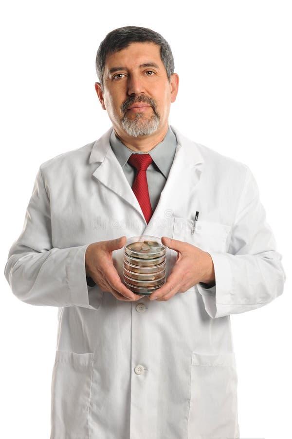 科学家藏品与细菌的培养皿 免版税库存照片