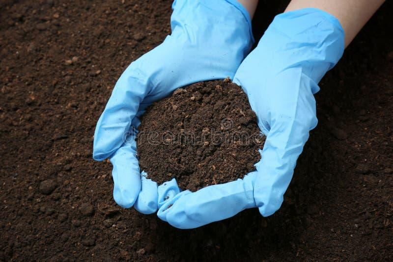 科学家藏品堆在地面上的土壤 库存图片