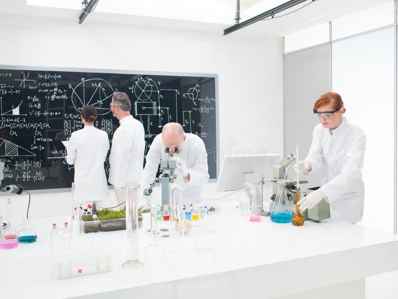 科学家队在实验室 免版税库存照片